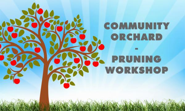 Community Orchard Pruning Workshop